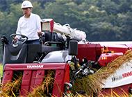 コンバイン 刈り条数が多いモデルは高く売れます! 画像