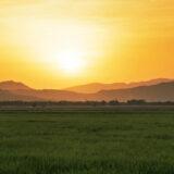三菱農機具買取強化中|宮城農機具市場