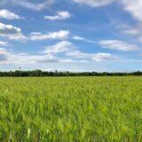 イセキ農機具買取強化中|宮城農機具市場